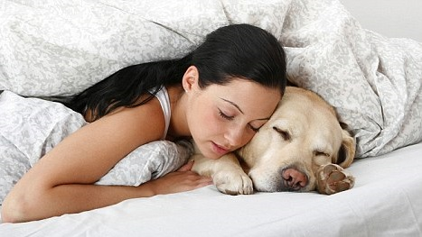 sleeping woman and dog